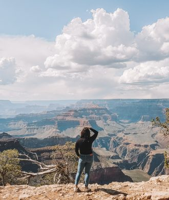 Grand Canyon South Rim Day Tour, United States